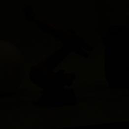 Ein Blitztrick: Raumlichtausblenden ohne das Licht auszuschalten. Hierzu setzt man die Belichtungszeit auf die Blitzsynchronzeit.