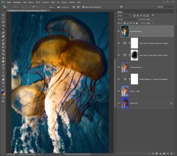 Qualle heller, Hintergrund dunkler (Kontrast); Komplementärfarben einsetzen
