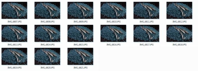 rund fuffzehn Bilder für den Stack, aufgenommen per Fokus-Variation